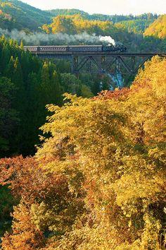Steam locomotive Aizu Tadami in autumn, Fukushima, Japan
