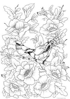 Bird Couple - Printable Adult Coloring Page from Favoreads (Coloring book pages for adults and kids, Coloring sheets, Colouring designs) Fairy Coloring Pages, Coloring Books, Kids Coloring, Coloring Pages Nature, Alphabet Coloring, Mandala Coloring, Colouring Sheets For Adults, Printable Adult Coloring Pages, Bird Art