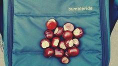 Bumbleride Indie 4 #bumbleride #bumblerideindie4 #bumblerideadventures #perfectstroller #stroller
