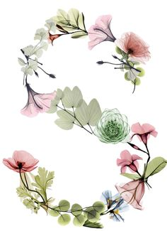 Alphabets Flower Letters, Flower Frame, Flower Art, Flower Wallpaper, Wallpaper Backgrounds, Iphone Wallpaper, Watercolor Lettering, Watercolor Paintings, Letter S Calligraphy