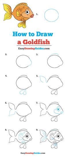 Learn to draw a goldfish. This step-by-step tutorial makes it easy. Kids and beginners alike can now draw a great goldfish. Pet Goldfish, Cartoon Fish, Cartoon Art, Cartoon Drawings Of Animals, Fish Drawings, Creature Drawings, Kawaii Drawings, Drawing Tutorials For Kids, Stickers