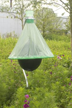 The H-Trap placed in a sunny location to attract horseflies and other biting insects away from the horses and into the trap.