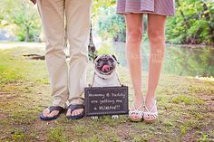 Baby Announcement with Dog | Southern Daisy Photography