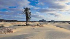 Cabo Verde Boa Vista. E de repente um deserto no meio de um oceano | #caboverde #boavista