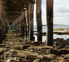 Point Lonsdale Beach   #photography #mynikonlife by tahliaholmes http://ift.tt/1EBJopQ