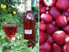 """""""The best way to show that wine making is easy is to provide a recipe. As it is now summer (allegedly in this part of England) I have two for you: rose petal wine and strawberry wine.  The first is unusual, but in a good way, and tastes of Turkish Delight.  The second is one of my very best, and"""