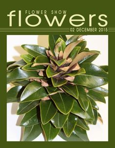 FLOWER SHOW FLOWERS 02 DECEMBER 2015… A Year in Flowers PLANT LIST: Magnolia leaves inserted into Digger Pine Cone www.flowershowflowers.com