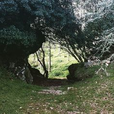 by http://ift.tt/1OJSkeg - Sardegna turismo by italylandscape.com #traveloffers #holiday | #sassari #macomer #mattina #view #pomeriggio #natura #nature #verde #bosco #parco #instasardegna #insardegna #igersassari #alberi #igersardegna #lanuovasardegna #paradiso #panorama #paesaggio #colori #landscape #passeggiata #bellezza #buongiorno #buondì #buonasera #buonaserata #vita Foto presente anche su http://ift.tt/1tOf9XD | February 21 2016 at 03:52PM (ph andre__mur ) | #traveloffers #holiday…