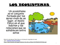 CoSqUiLLiTaS eN La PaNzA BLoGs: LOS ECOSISTEMAS ( CON ACTIVIDADES ) Teaching Time, Teaching Science, Social Science, Teaching Resources, Fourth Grade, Third Grade, Ecosystems Projects, 5th Grade Science, Dual Language