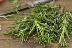 O chá de alecrim ajuda a combater depressão, estresse, estimula o bom humor e melhora a memória