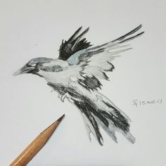 Water gray scale crow tattoo