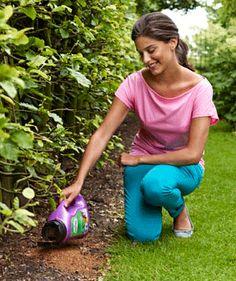 Wil jij sprookjesachtige bloembedden in je borders en kleurrijk en snel resultaat? Met het nieuwe kant-en-klare mengsel van grond, bloemzaad en plantenvoeding heb je in een rap tempo een bloembed vol fleurige bloemen. Elke kleurvariant bevat een mix van verschillende bloemsoorten waardoor je een gespreide bloei krijgt. Dat betekent dat je de tuin van juni tot het najaar in bloei staat...