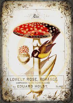 Printable Mushroom and Bird Wall Art - 5 x 7 Digital Download