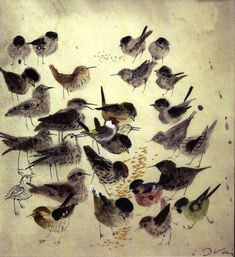 Józef Wilkon (Polish illustrator and author in German, - Birds Art And Illustration, Book Illustrations, Inspiration Art, Arte Popular, Art Design, Bird Art, Oeuvre D'art, Bird Feathers, Beautiful Birds