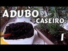 Adubo Caseiro fácil 1, para hortas de temperos e plantas Dica Mi Present...