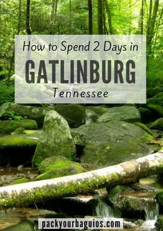 wanderlust mountains How to Spend 2 Days in Gatlinburg, Tennessee How to Spend 2 Days in Gatlinburg Tennessee Gatlinburg Vacation, Tennessee Vacation, Gatlinburg Tn, Gatlinburg Tennessee Attractions, Tennessee Camping, Visit Tennessee, Great Smoky Mountains, Smoky Mountains Tennessee, Tennessee River