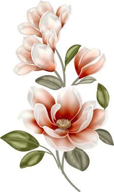 Florinda ou flor linda?