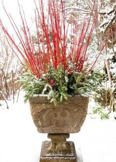 Learn how to make winter garden planters and remind yourself of the bond we have with nature. Easy container recipes, tips and tricks. garden christmas How to Make Winter Garden Planters Christmas Urns, Christmas Planters, Outdoor Christmas, Christmas Decorations, Holiday Decorating, Decorating Ideas, Winter Container Gardening, Container Plants, Succulent Containers