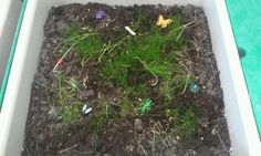 a bug themed sensory bin at the sensory station. just filled the bin with soil and grass seeds to grow our own grass, then added some small plastic bugs to play with.