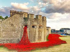 Tower of London River of Blood