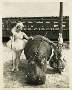 Lotus the Hippo, Barnes Circus Publicity Photograph, c. 1930
