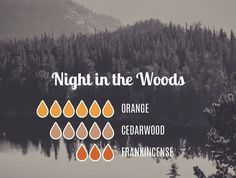 Night In the Woods - Orange Cedarwood Frank Essential Oils Guide, Essential Oil Scents, Essential Oil Diffuser Blends, Essential Oil Uses, Doterra Essential Oils, Young Living Oils, Young Living Essential Oils, Diffuser Recipes, Aromatherapy Oils