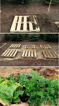 Pallet Garden | Creative DIY Pallet Planter Ideas for Spring