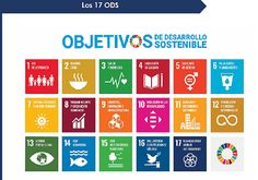 Taller de generació d'Idees ODS en Gestió i Lideratge Les Nations Unies, United Nations, St Louis Science Center, Poverty And Hunger, Security Training, Sustainable City, Sustainable Fashion, Teacher Lesson Plans, Pictogram