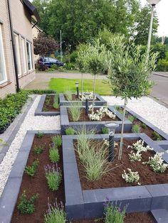 Back Garden Design, Garden Design Plans, Backyard Garden Design, Backyard Landscaping, Modern Backyard, Blue Garden, Garden Art, Front Yard Plants, Outdoor Patio Designs