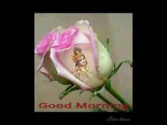 Good Morning Video Songs, Morning Songs, Good Morning Gif, Good Morning Greetings, Morning Images, Morning Quotes, Good Morning Krishna, Good Night Love Images, Grateful Heart