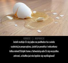 Jeżeli rozbije Ci się jajko na podłodze to o wiele szybciej je posprzątasz, jeżeli je posolisz i odczekasz kilka minut! ...