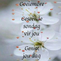 Morning Prayer Quotes, Happy Sunday Quotes, Morning Prayers, Good Morning Wishes, Good Morning Quotes, Lekker Dag, Goeie More, Afrikaans Quotes, Special Quotes