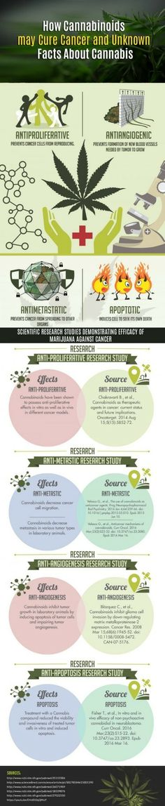 This great infographic from survivingmesothelioma.com explains how cannabinoids help fight cancer.