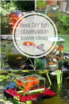DIY fish observation tower ideas for backyard ponds Patio Pond, Diy Pond, Diy Patio, Landscaping With Rocks, Backyard Landscaping, Backyard Ponds, Landscaping Ideas, Sloped Backyard, Koi Ponds