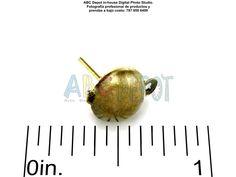 Poste para #Pantalla en acero color #Bronce aniguo con media esfera. 8mm de diámetro x 15mm de largo. Código: HBEPB
