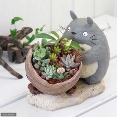 My Neighbor Totoro Gardening Planter from Japan New #totoro