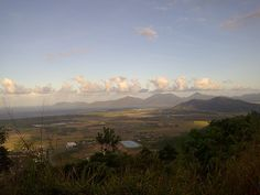 Cairns, QLD, Australia - in this part of the world, nature is very much in charge.
