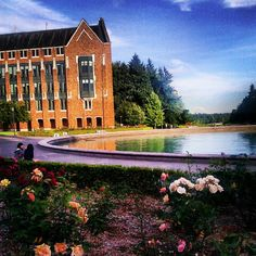 Another Beautiful Day on Campus!  Any Husky fans out there?  Seattle has some absolutely amazing and beautiful days!
