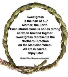 Sweet grass is the hair of our mother, the Earth. Each strand alone is not as strong as when braided together. Sweet grass represents the Northern Direction on the Medicine Wheel. All life is sacred. Native American Spirituality, Native American Wisdom, Native American History, American Indians, Cree Indians, American Symbols, American Life, Smudging Prayer, Medicine Wheel