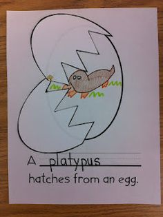 Could make a book of these pages to teach students the different animals/birds that are hatched from eggs.