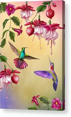 Humming Birds And Acrylic Print by Jean Plout. All acrylic prints are professionally printed, packaged, and shipped within 3 - 4 business days and delivered ready-to-hang on your wall. Choose from multiple sizes and mounting options. Hummingbird Painting, Art Mignon, Fabric Painting, Beautiful Birds, Beautiful Flower Drawings, Flower Art, Fine Art America, Art Drawings, Canvas Art