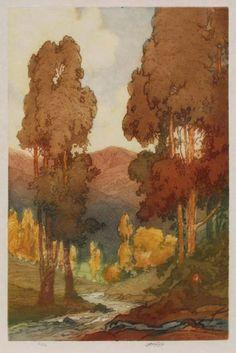John Wesley Cotton (1868-1931) - California Eucalyptus. Aquatint Etching on Vellum. America. Circa 1920.
