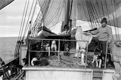 Dog handler Cecil Meares on the deck of the terra nova