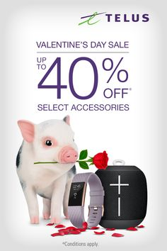 Save up to 40% on select accessories* when you make TELUS your tech destination for Valentine's Day gifts. *Conditions apply.