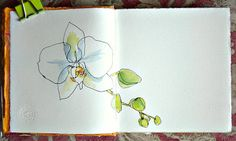"""A New Orchid Blossom in a New Sketchbook"" by Catherine Carey on catherinestudio.blogspot.com"