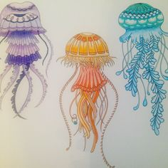 Lost Ocean, coloring book by Johanna Basford. Jellyfish in colored pencil.