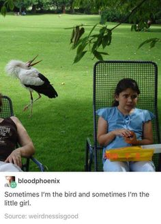 I'm always the bird. The girl is society.
