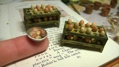 awaywiththefairiesminiatures: Handmade miniature egg trays