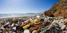 88% de la surface des océans polluée par du plastique {Défis Mondiaux}