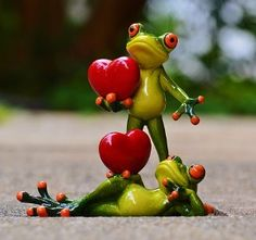 Cute and Funny Frog Couple Greeting Card With Your Name.Cute Love Name Card.Print Couple Name on Funny Frog Holding Red Heart Wish Card With Custom Name Valentines Day Trivia, Love Valentines, Valentine Gifts, Lame Pick Up Lines, Cute Love Wallpapers, Signs Of True Love, Image Hd, Funny Frogs, Frog Art